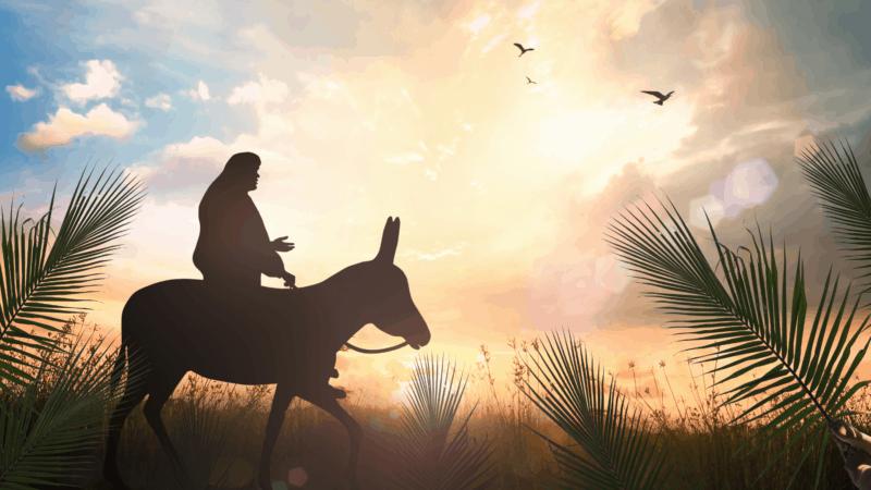 Palm Sunday – The Humble King – Sermon – 5 April 2020
