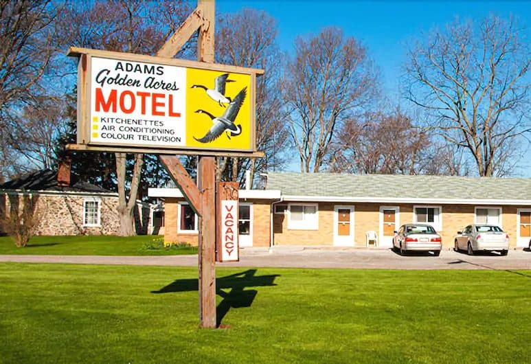 Adams Golden Acres motel kingsville